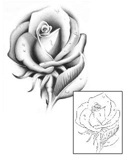 rose tattoo design gjf  tattoojohnnycom