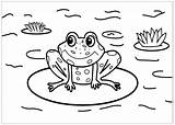 Coloring Frogs Pages Frog Cute Printable Colouring Sheets Children Drawing Sheet Animals Justcolor Drawn Baby Pond Animal sketch template