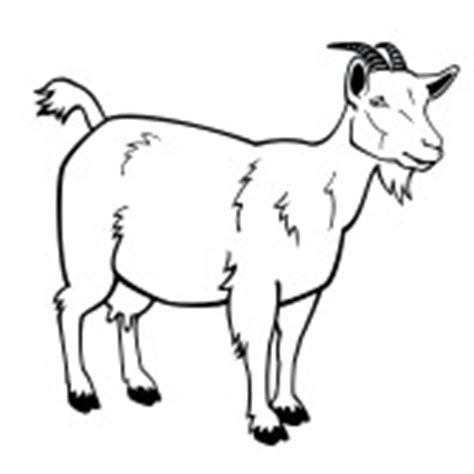 goat clipart black and white boer goat outline clipart panda free clipart images
