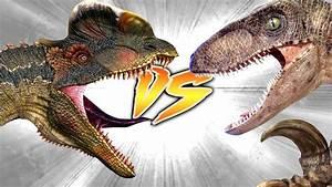 Dilophosaurus VS Utahraptor [Who Would Win?] - YouTube  Dilophosaurus
