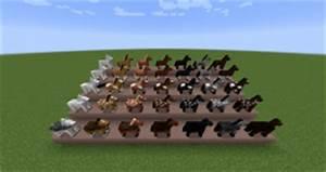 Minecraft Horse Chart Horse Official Minecraft Wiki