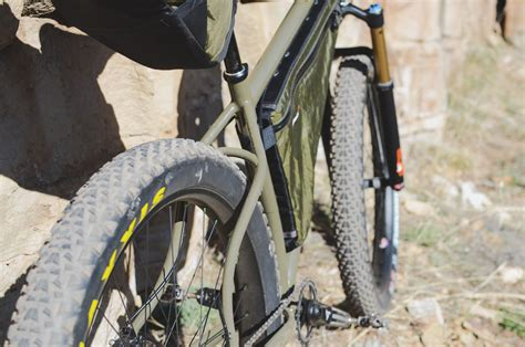 Shedding Bearded Wont Eat by 100 Maxxis Mammoth Review Bikepacking Surly