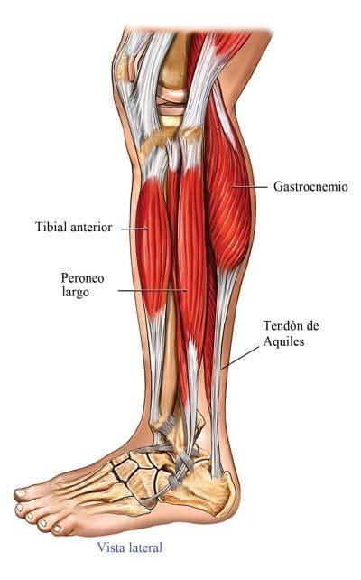 Dolore dita piede destro