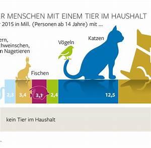 Katze Im Garten Begraben : katze im garten begraben wie tief hausidee ~ Lizthompson.info Haus und Dekorationen