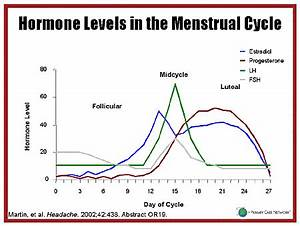 Hormone Levels During Menstrual Cycle Graph