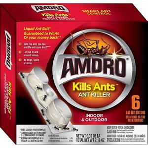 Best Ant Killer Reviews 2018 : Say goodbye to ants this summer