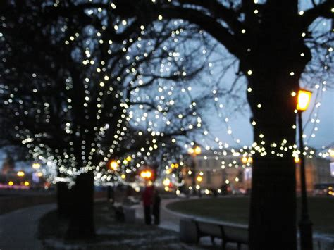 photo city lights evening winter  image