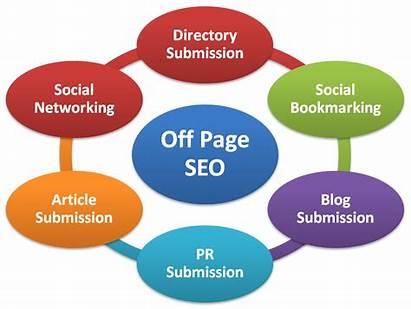 Seo Company Tips Jose San Website Learn