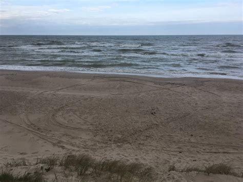 Piesārņojuma dēļ aizliedz peldēties Abragciema pludmalē; neiesaka vēl trīs peldvietās / Raksts