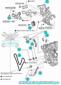 [SCHEMATICS_48IS]  2007 Toyota Rav4 Engine Diagram. toyota rav4 2007 electrical wiring diagram  auto repair. replace water pump my stupid projects. 2006 toyota rav4 timing  chain parts diagram 2gr fe engine. 2007 toyota rav4 | 2007 Toyota Rav4 Engine Diagram |  | A.2002-acura-tl-radio.info. All Rights Reserved.