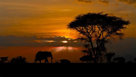 African Landscape Sunset  Nature Wallpapers (9237