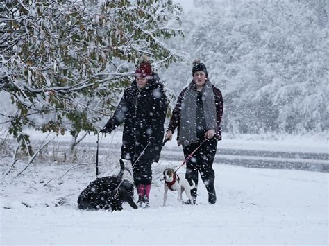 UK weather forecast: Snow and bitter temperatures set to ...