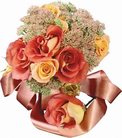 Fleurs Tubes Encontradas Flores Hadrianus Flowers Gifs