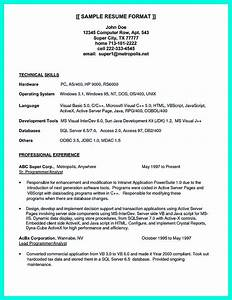 Programmer Resume Sample Computer Programmer Resume Examples To Impress Employers