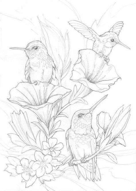 Baby bird tattoo families 33+ ideas for 2019 | Bird drawings, Bird sketch, Hummingbird drawing