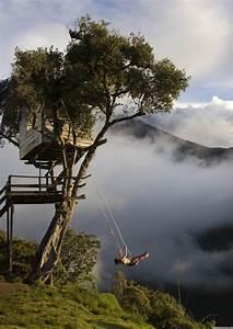 Tree House  Casa Del Arbol  - Ecuador