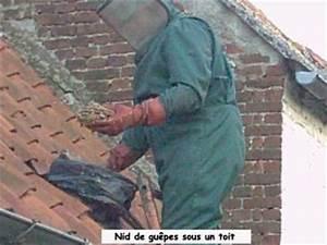 Nid De Guepe Dans Le Toit : nid de guepes dans un toit les pompiers de bernissart ~ Medecine-chirurgie-esthetiques.com Avis de Voitures