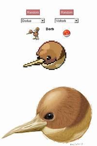 Doduo & Voltron Pokemon Fusion Meme By Kane Carter