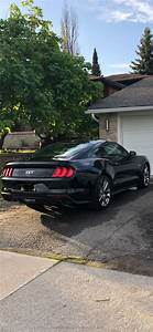 Ford Lease Takeover in Kingston, ON : 2018 Ford Mustang GT Coupe Premium Manual 2WD ID:#5303 ...