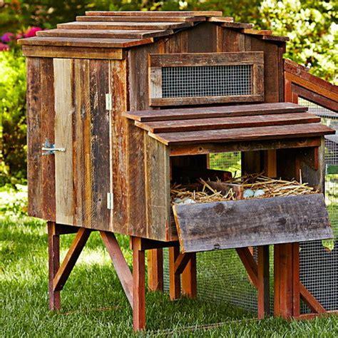chicken coop ideas designs  layouts   backyard