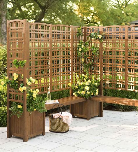 Backyard Privacy Screens Trellis - outdoor eucalyptus privacy screen trellises and planters