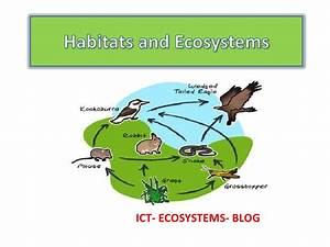 ecosystems for kids - DriverLayer Search Engine