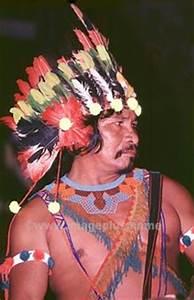 Artisanat De Guyane : artisanat art traditionnel amerindien de guyane ~ Premium-room.com Idées de Décoration