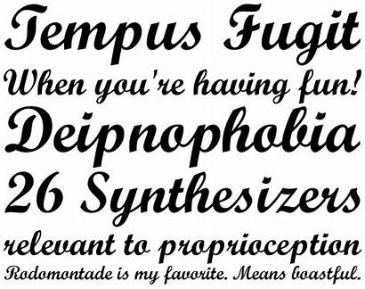 Monotype Script Font Fonts Bold Fonthaus Ttf