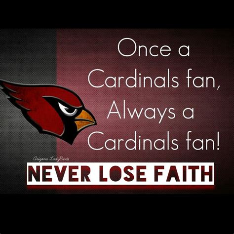 Arizona Cardinals Memes - 17 best images about arizona cardinals fans on pinterest arizona cardinals football fan in