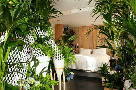 plante dans la chambre les plantes vertes dans la chambre annikapanika