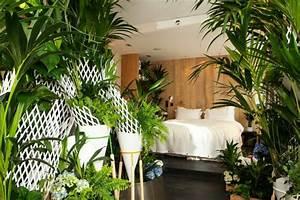 Les plantes vertes dans la chambre annikapanika for Plante verte dans une chambre a coucher