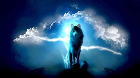 1080p Lone Wolf Hd Wallpaper lone wolf wallpapers wallpaper cave