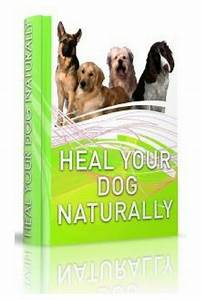 U0026quot At Last  A Book That Reveals The Underlying Causes Of