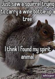 Squirrel Spirit Animal Funny Quotes