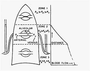 Поражение сосудов головного мозга при гипертонии