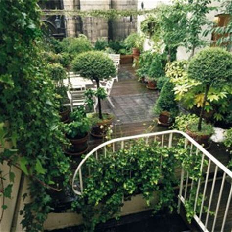 terrasse 224 l ombre des arbres conseils arbres et arbustes