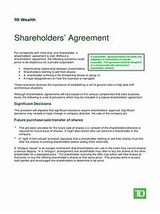Excel Bank Register Shareholder Agreement 5 Free Templates In Pdf Word