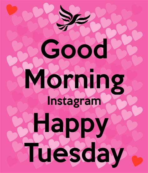 good morning instagram happy tuesday pictures