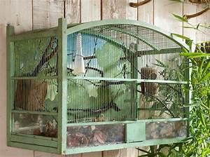 Cage Oiseau Deco : comment amenager cage oiseaux ~ Teatrodelosmanantiales.com Idées de Décoration
