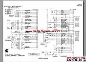 Citroen C8 Workshop Wiring Diagram