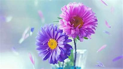 Purple Flowers Wallpapers Flower Parede Papel 1080