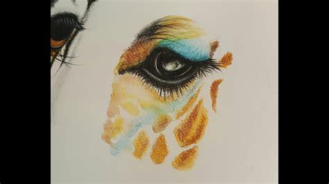 drawing  giraffe eye  watercolor pencils
