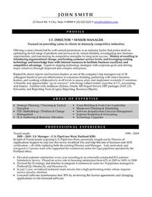 student nurse resume template top executive resume templates sles