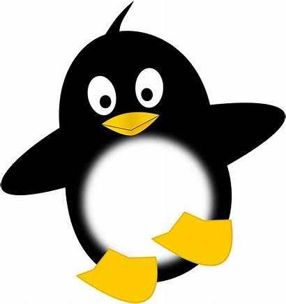 Clipart Penguins Dancing Clipartbest Clip Penguin Funny