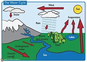 Water | El bloc d'anglès de l'escola Bogatell