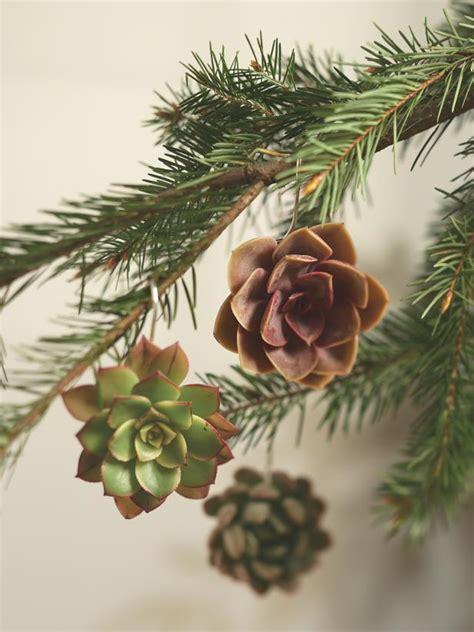 natural christmas ornaments hgtv