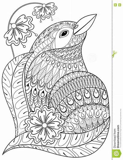Coloring Pages Animal Exotic Bird Zentangle Adults