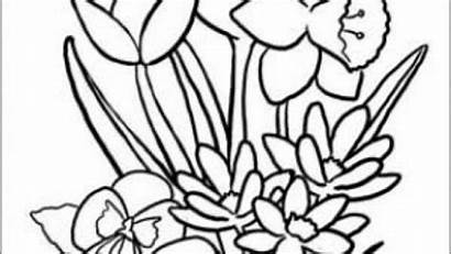 Coloring Seniors Pages Printable Getcolorings