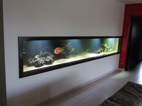 aquarium dans le calvados mon aquarium