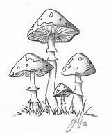 Mushrooms Mushroom Drawings Lil Drawing Cartoon Simple Sketch Line Weed Clipart Cool Sketches Coloring Deviantart Rajzok Doodle Getdrawings Draw Egyszerű sketch template